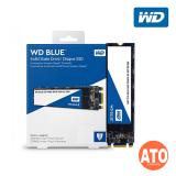 WD Blue M.2 SATA SSD (120GB | 240GB | 480GB)